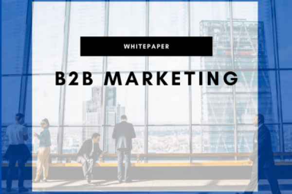 B2B Marketing Whitepaper